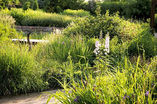 Tajemniczy ogród str. 1 :: Świat Rezydencji :: Luksusowa strona życia -  rezydencje, wnętrza, design, architektura, technologie, ogrody